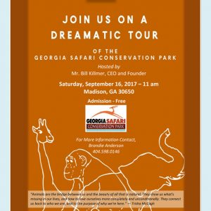 The Dreamatic Safari Tour
