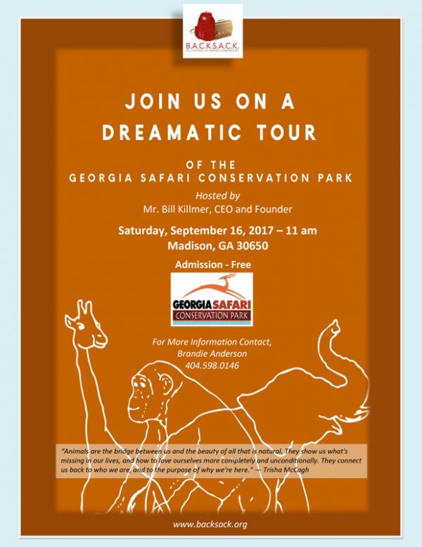 The-Dreamatic-Safari-Tour